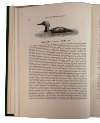 Birds of Massachusetts and other New England States. Part I. Water Birds, Marsh Birds and Shore Birds. Part II. Land Birds from Bob-Whites to Grackles. Part III. Land Birds from Sparrows to Thrushes. Illustrated with Colour Plates from Drawings by Louis Agassiz Fuertes and Figures and Cuts from Drawings and Photographs. In Three Volumes.